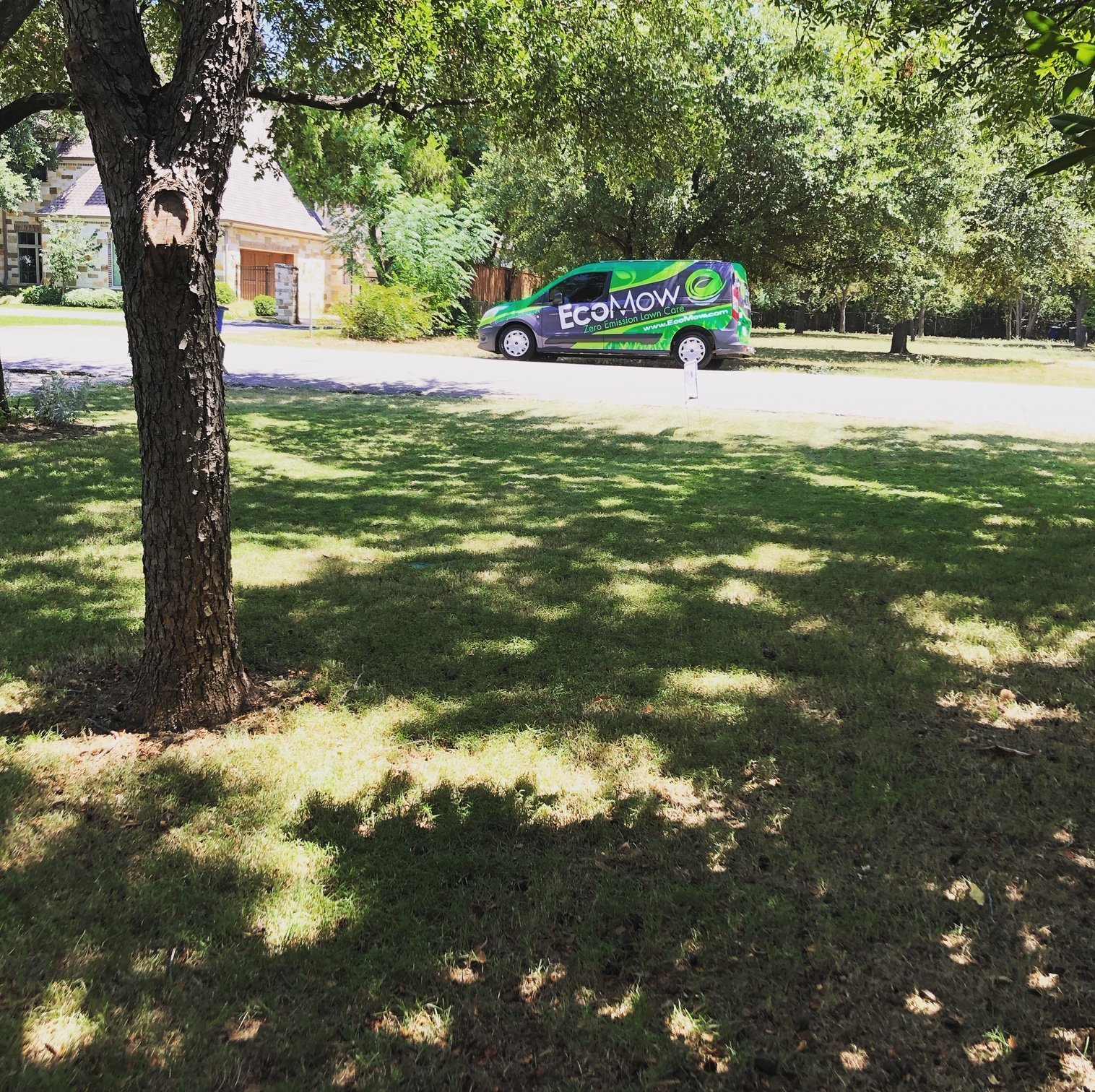 EcoMow Dallas Zero Emission Lawn Care